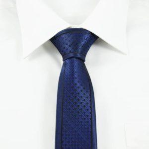 Klassisk blåternet slips tern