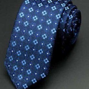 Moderne slips med blå tern